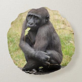 Coussins Ronds jeune gorille