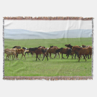 Couverture Chevaux sur la prairie - photographie de paysage
