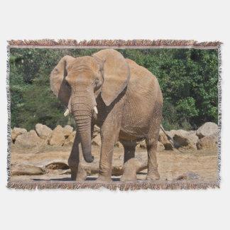 Couverture de jet d'éléphant de Taureau