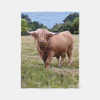 Couverture des montagnes d'ouatine de vache