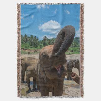 Couverture Eau potable d'éléphant, Sri Lanka