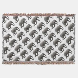 Couverture Éléphant africain