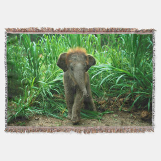 Couverture Éléphant et herbe