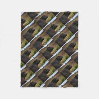 Couverture Polaire Vache des montagnes écossaise - Ecosse
