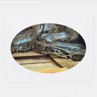 Couverture Pour Bébé serpent de python regardant à gauche sur la caisse