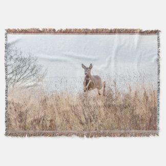 couverture sautante de photographie de cerfs