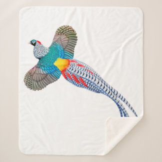 Couverture Sherpa Madame Amherst Pheasant Sherpa Blanket