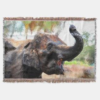 Couvertures Éléphant