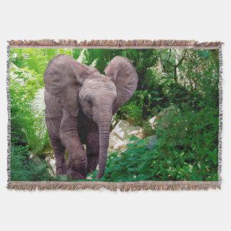 Couvertures Éléphant et jungle
