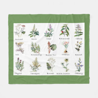 Couvertures polychromes d'illustrations d'herbes