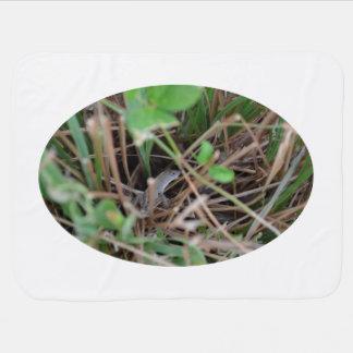Couvertures Pour Bébé cache-cache de lézard chez l'animal de reptile