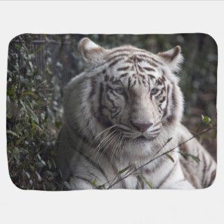 Couvertures Pour Bébé Plan rapproché blanc de tigre