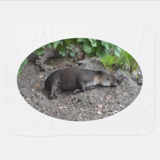 Couvertures Pour Bébé tapir dormant sur le sable