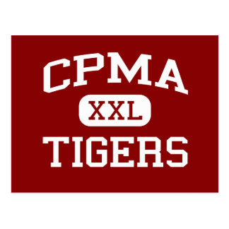 CPMA - Tigres - milieu - San Diego la Californie Carte Postale