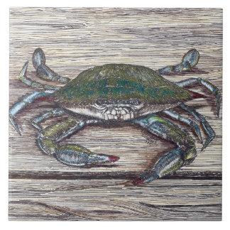Crabe bleu sur la tuile en céramique de photo de grand carreau carré