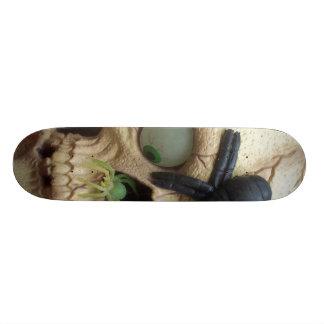 Crâne d'araignée skateboards cutomisables