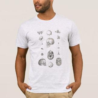 Crâne et T-shirt d'anatomie d'os