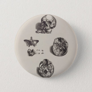 Crâne - Icones Anatomicae Badge Rond 5 Cm