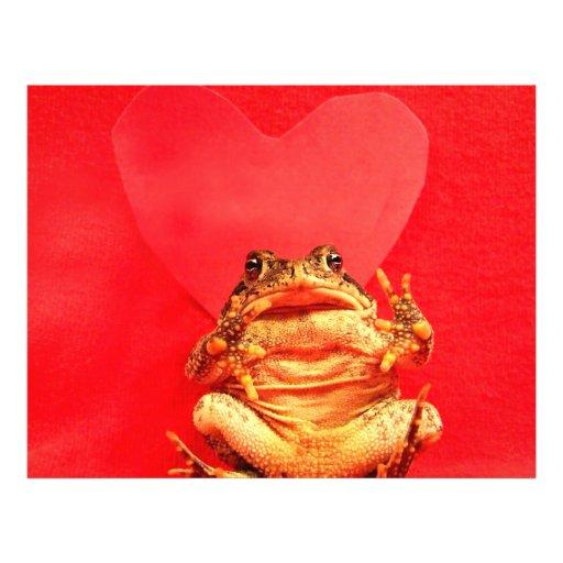 Crapaud de grenouille devant la photo rouge de coe prospectus en couleur