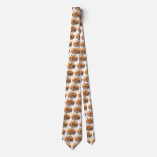 Cravate Art vintage d'étiquette de cigare, Indien rouge de