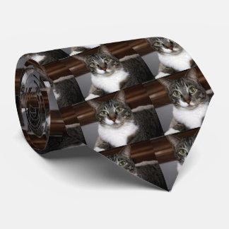 Cravate Chat tigré vous regardant