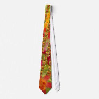 Cravate Créez votre propre beau produit coloré de
