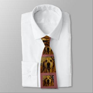 Cravate d'Allie