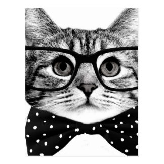 cravate d'arc de chat - chat en verre - chat en carte postale