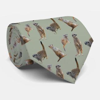 Cravate de frénésie de Meerkat (kaki)