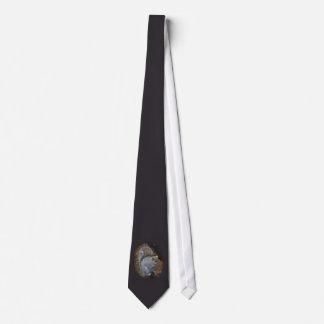 Cravate Écureuil de gris oriental - carolinensis de