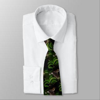 Cravate 'Elepaio (FLYCATCHER hawaïen)