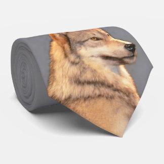 Cravate Loup 2