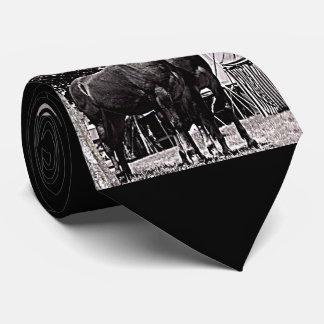 Cravate Mule du Missouri