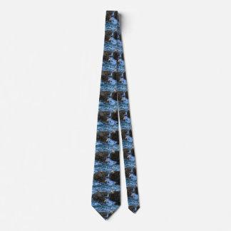Cravate Pélicans sur des roches de mer,