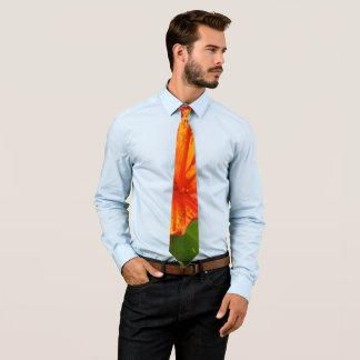 Cravate Vibrant