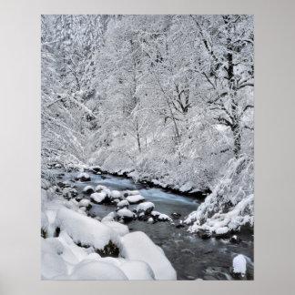 Crique de blanc de Milou pittoresque, Orégon Poster