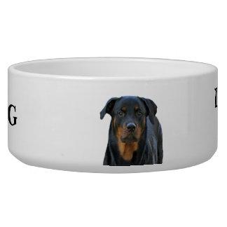 Cuvette d'avertissement de chien de bave de assiette pour chien