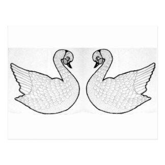 Cygnes blancs carte postale