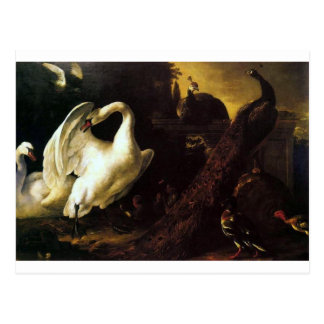 Cygnes et paons par le d'Hondecoeter de Melchior Carte Postale