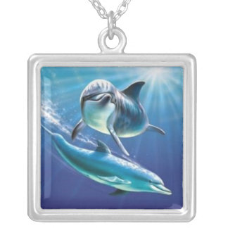 dauphins collier