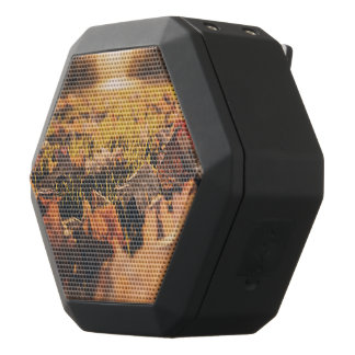 De bladeren van de herfst zwarte bluetooth speaker