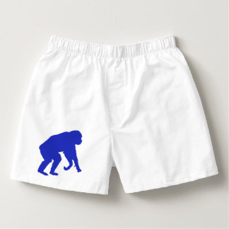De blauwe Boksers van de Chimpansee