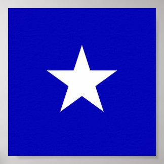 De Blauwe Vlag van Bonnie Poster