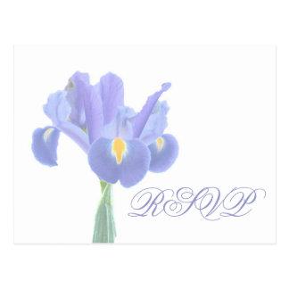 De Briefkaarten van de Iris van het huwelijk RSVP