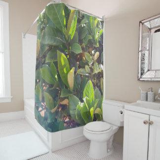De feuille rideau en douche étroit vert