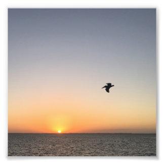 De Foto van de Zonsopgang van de pelikaan Foto Afdruk