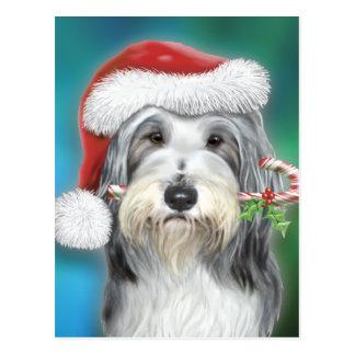 De gebaarde Kerstman BG van de Collie Wenskaart