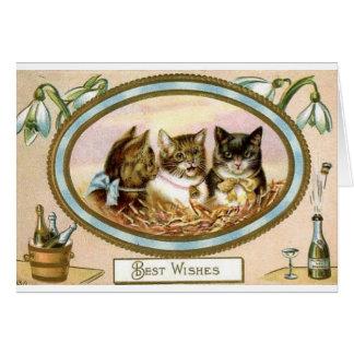 De Gelukwensen van het Trio van de kat - Speciale Kaart