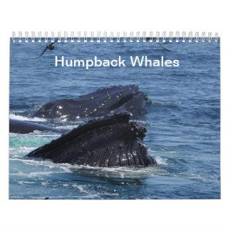 De kalender van de Walvissen van de gebochelde