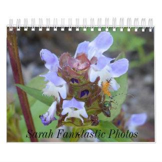 De Kalender van insecten en van Bloemen